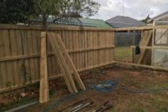Fencing46