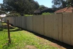 Garden Fencing12