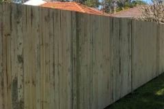 Garden Fencing15